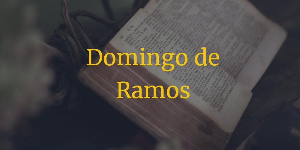 Horarios e Itinerarios Domingo de Ramos Semana Santa Málaga